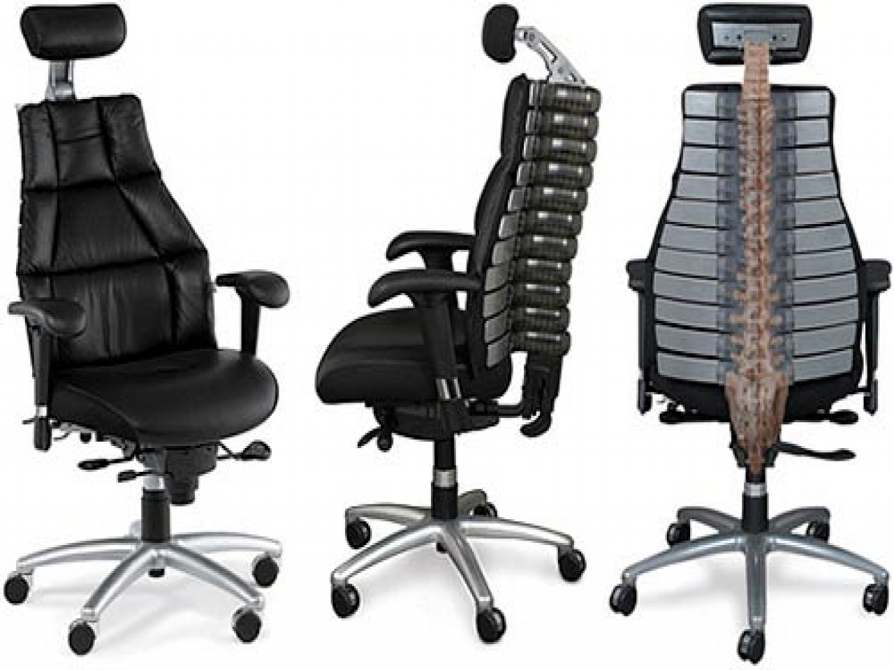 spine office chair