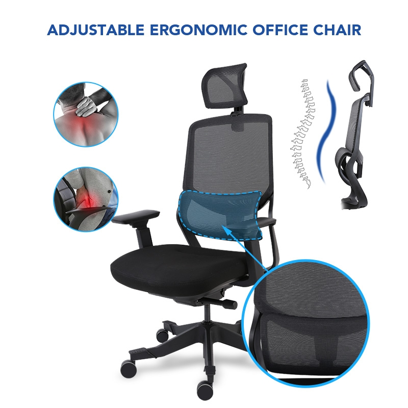 lumbar support for office chair