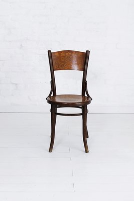 shell bentwood dining chairs